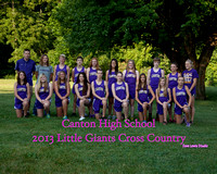 2013 CHS Cross Country Team